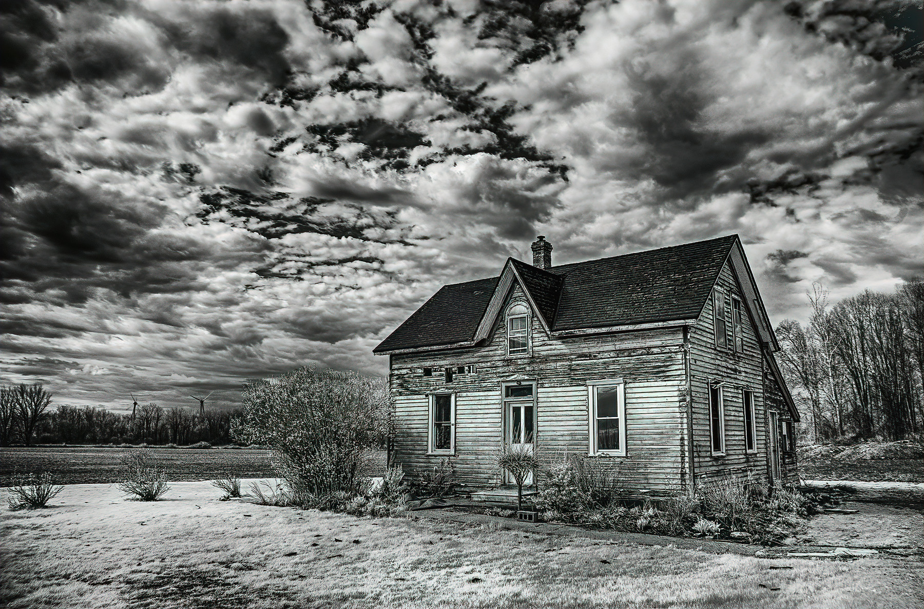 Infrared-0326_HDR-b and w website